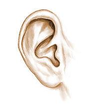 Chirurgie des oreilles décollées